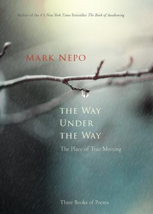 Mark Nepo - spiritual writer, poet, philosopher, healing